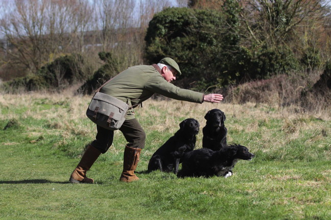 Gundog training dummies in a range of colours